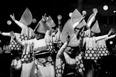 Tokushima Awa Odori: The Dance Of Fools