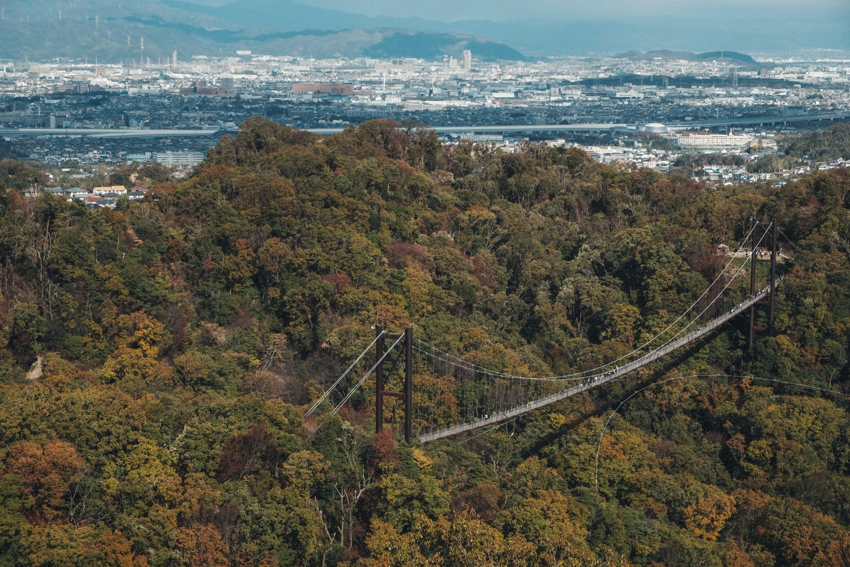 Hoshi no Buranko (星のブランコ) ,the swing of stars, during autumn.